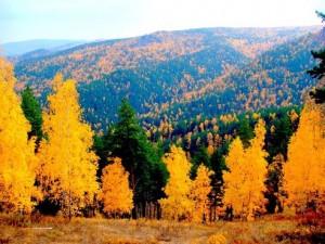 Золотая осень в Бурятии